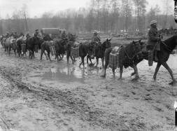 Somme 1916 Pack Transport